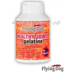 «Желатин» для собак  (Gelatine) FlyingDog
