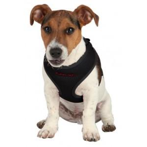 Шлейка жилетка с поводком для щенка
